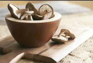 Лечение грибами