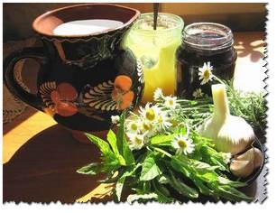 Травы для лечения бронхита