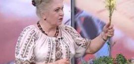 Наталья Земная - №5 все полезное для организма